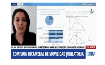 La exposición de la OPC sobre la composición del Sistema Previsional